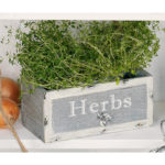 Schublade Herbs | Best2buy24.de